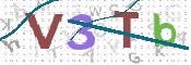 Verification Image